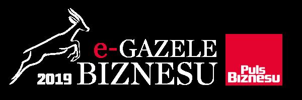 Gazele e-Biznesu 2019